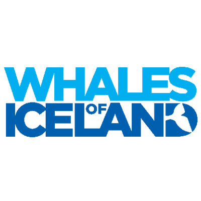 Spons Whales of Iceland